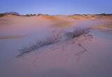 _MG_8498  Dune Dusk