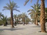 koubaa courtyard.
