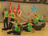 Vojens Gymnastik og Idrætsefterskole