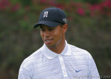 25486c = Tiger Woods