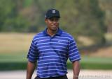 01912c - Tiger Woods