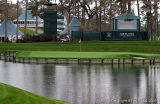 25251 - !7th Green at the Players