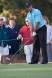 29303 - Tiger Woods