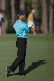 29326 - Tiger Woods