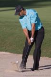 29417 - Tiger Woods