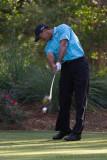 29465 - Tiger Woods