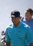 29716 - Tiger Woods