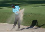 29418c - Tiger Woods
