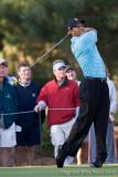 29309 - Tiger Woods