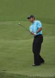 29515R - Tiger Woods