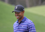 02253Rc - Tiger Woods