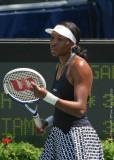 27420c - Venus Williams