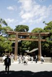 Tori at Meiji shrine