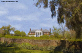Boone Hall Plantation, In Oil