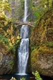 Multnomah Falls, along Columbia River Gorge