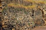 Overgrown wall, Beaune