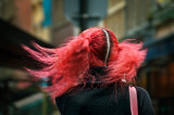 The windy redhead