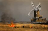 Reed Burning