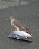 20070407 012 Merlin & supper