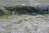 Walmer Beach 4