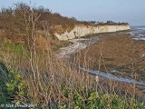 Pegwell Bay Nature Reserve