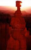 Bryce - Thor's Hammer sunrise 026.jpg