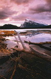Vermillion Lakes Spring 01 - 001.jpg