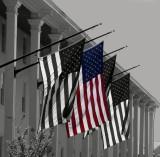 Congress Hall Flags
