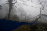 Prayer Flags in the Mist
