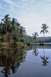 - THE  BACKWATERS -