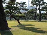 Tokio es una Ciudad  muy Jardinizada