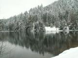 Le lac de Longemer au gré des saisons