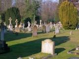 Graves01.jpg
