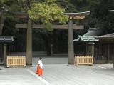 Shrine Ms
