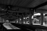 Lakeshore / Gardiner Express Way