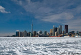 Toronto Skyline in WInter