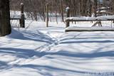 Gated Snow