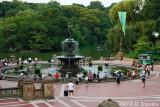 New York, Central Park #5