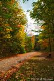 Godlen Path  - Sunnybrook Park
