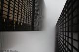 Foggy Morining - Toronto.