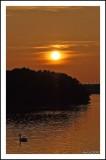 CSC_7061.jpg 2.jpg Marine lake Southport.jpg