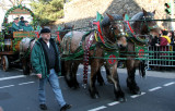 Beer Wagon Horses