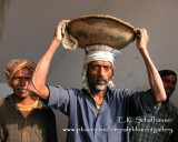 Faces of India: Portraits of a People