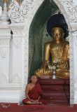 Monk In Meditation, Shwedagon (Dec 06)
