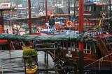 Scenic Chaos, Halong Bay (Mar 07)
