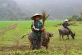 Hoa Lu, Ancient Capital of Vietnam (Mar 07)