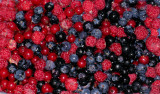 Food for free - berries