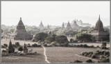 Bagan Vista at Dusk