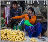 Corn Sellers