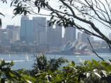 City View from Taronga zoo